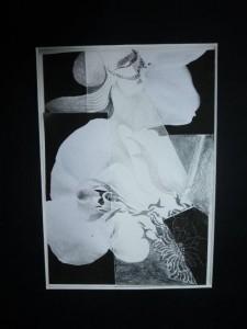 Blütenträume Collage
