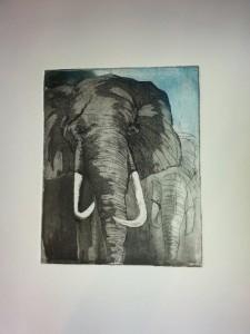 Chitwan elefant Radierung
