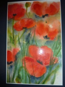 Wilder Mohn Aquarell